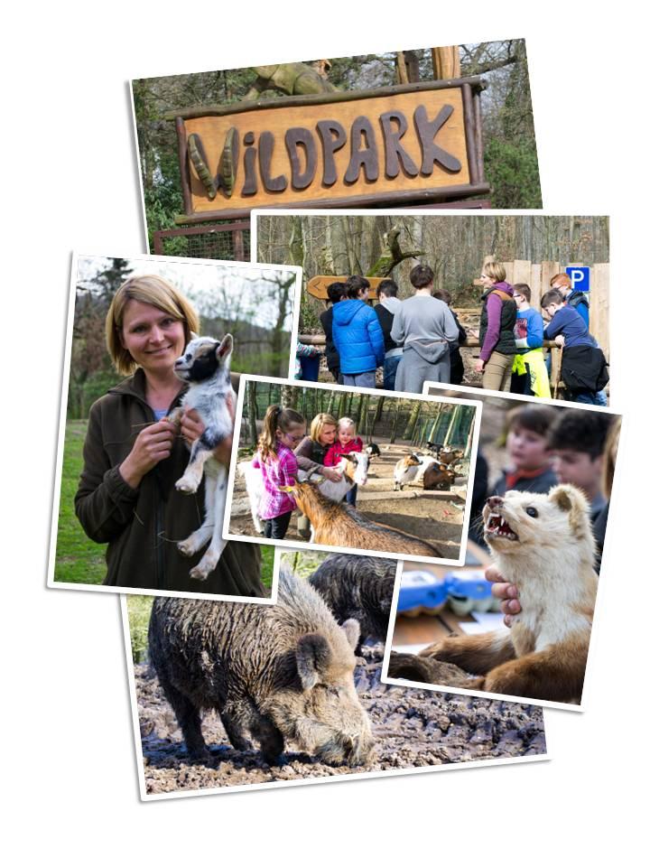 Collage Wildpark-Akademie