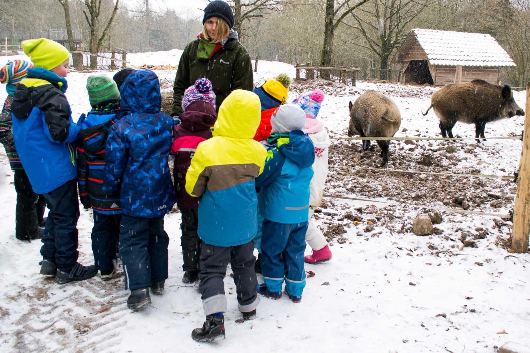 Kindergeburtstag Wildschweine füttern Saarbrücken